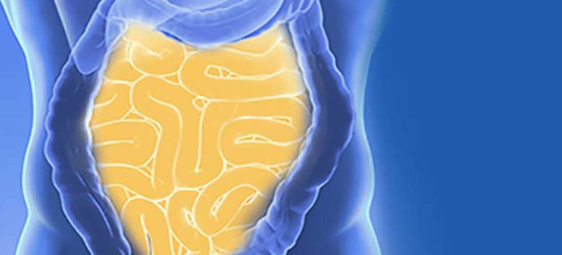Dünndarmentzündung | Dr. Pfundstein | München | Gastroenterologe | Magenspiegelung | Darmspiegelung