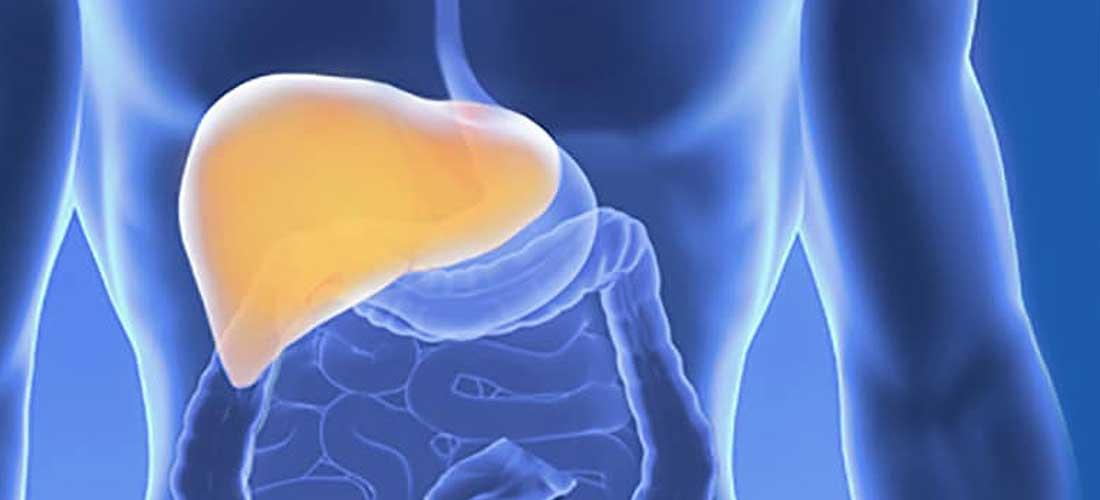 Leberbeschwerden | Dr. Pfundstein | München | Gastroenterologe | Magenspiegelung | Darmspiegelung